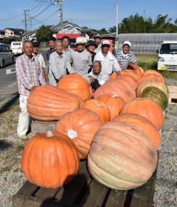 収穫したジャンボカボチャとメンバー