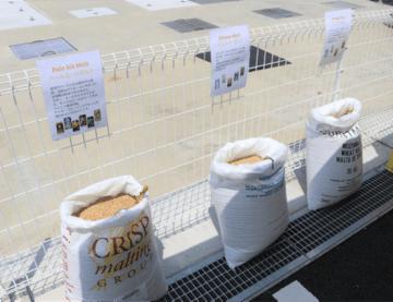 6種類用意された麦芽は、それぞれ香りや味に違いがあります。