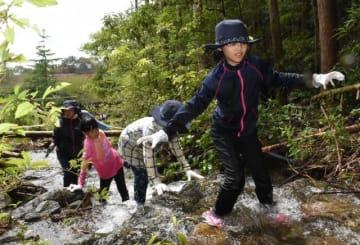 行縢山の麓で沢登りに挑戦する子どもたち
