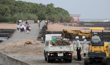 台風10号の影響で、青島神社参道に打ち寄せられた流木やごみを撤去する建設業者ら=15日午前、宮崎市青島