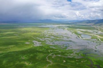 豊かな水と緑  チベット北部の牧場風景
