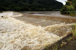 男性が流された千種川の現場付近=16日午前8時50分、兵庫県上郡町与井新