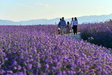 夏の旅行ブーム続く 7・8月の旅行者延べ10億人