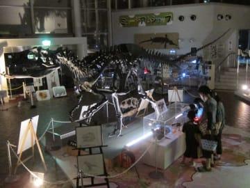 照明に照らされた館内で行われたサマーナイトミュージアム=関市小屋名、県博物館