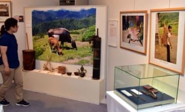 地域の独自性を保った在来家畜を紹介するアジアの在来家畜写真展