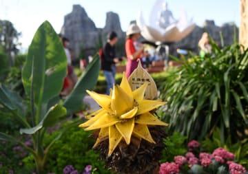 北京園芸博でインド・ナショナルデー開催