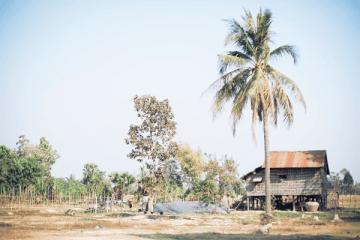 カンボジアの農村の美しい朝