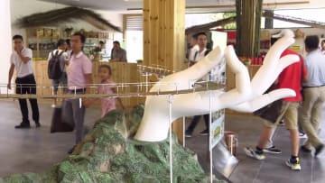 中国初 空に架かる「彩虹仙手橋」が試験的な公開