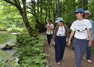 奥入瀬渓流の遊歩道を歩き、作品制作のヒントを探る作家たち