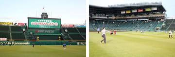 写真は以前のキャッチボールイベントより(画像提供:阪神甲子園球場、甲子園歴史館  [PR TIMES])