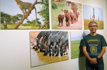 渡壁さんと展示されている動物写真