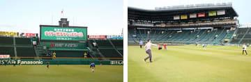 甲子園の天然芝エリア&土エリアでキャッチボール!特別イベント9月開催
