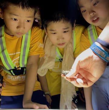 中国の「紅葉の名所」、青少年に「不思議な夜」を公開