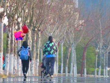 夏休みスタディーツアー消費額平均13万円、親は理性的に―中国