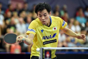 平野友樹、台湾の若きエースに完敗も価値あるベスト8<卓球・チェコオープン>