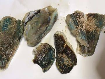 北九州市小倉北区の離島・馬島で見つかった、青色の薬品のようなものが付いた魚の切り身(特定NPO法人「SCAT」提供)