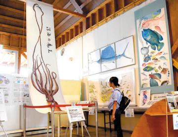 展示されているダイオウイカのカラー魚拓(左)=東松山市下青鳥の東松山農産物直売所「いなほてらす」