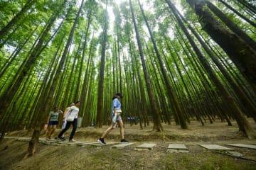 涼を求めて公園へ 重慶市