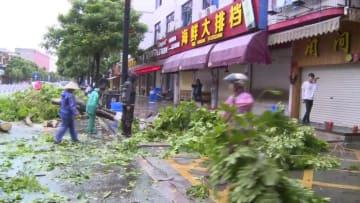 台風11号、街路樹の被害相次ぐ 福建省東山県