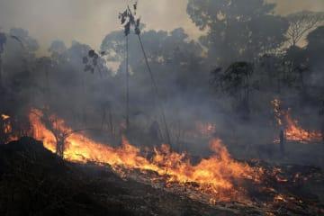 ブラジル・アマゾン地域での火災=26日(AP=共同)