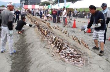 ぎっしりと並んだアユを炭で焼き上げた「鮎まるかじり祭」=24日、南魚沼市の魚野川河川敷