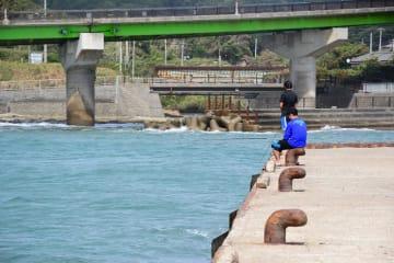 拓也さんが転落させられたとみられる岸壁=29日午後、富津市金谷