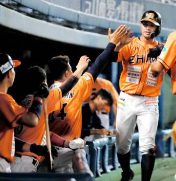 【愛媛MP―高知】4回裏、逆転となる3点目のホームを踏み、チームメートと喜ぶ愛媛MP・稲垣(右)=坊っちゃんスタジアム