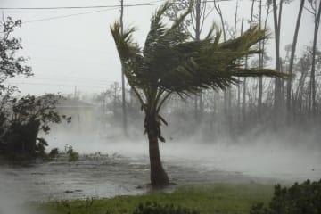 ハリケーン「ドリアン」の直撃を受けたバハマのフリーポートで冠水した道路=2日(AP=共同)