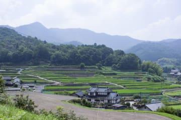 この美しい景色を求めて多くの写真愛好家が訪れる狩留家湯坂の棚田