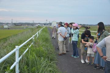 涸沼周辺の野鳥を観察する参加者=水戸市秋成町