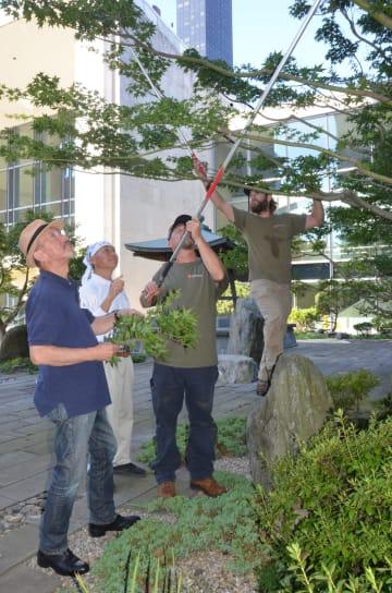 阿部さん(左端)と作業を指導する山田さん(左から2人目)(9月3日、国連本部の日本庭園で、写真・三浦良一)