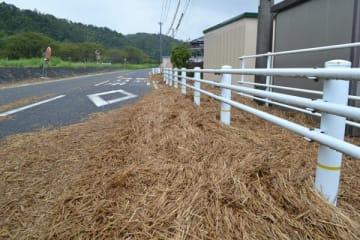 【雨で田んぼから流され、道路に散乱した稲わら=東員町中上で】