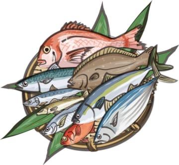 平塚の魚をつかまえよう!地引網体験 in 平塚海岸【参加者募集】