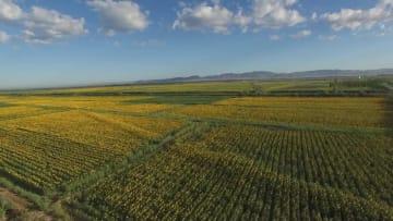 内モンゴル自治区の河套かんがい区域、世界かんがい施設遺産に