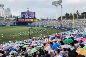 神宮球場のヤクルト-巨人戦は台風15号接近のため中止が決定【写真:荒川祐史】