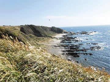 【参加者募集】変化に富む地形を見る「三浦半島活断層調査会」10月6日に城ヶ島観察会