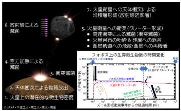 研究で検討した火星上のズニルクレーター形成衝突事件からの時系列と物理過程(フォボスにおける検討例)。(画像:JAXAの発表資料より)