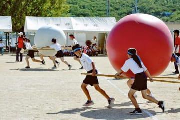 大きな玉を協力して運ぶ上南部中学校の生徒ら(8日、和歌山県みなべ町東本庄で)