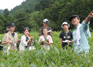 茶畑で、対馬の農業について大石さん(右)に聞き取りをする上智大生ら=対馬市上県町、大石農園