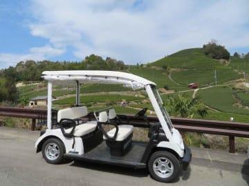 和束町の茶畑景観をゆっくりと楽しめる小型電気自動車(同町石寺)=同町提供
