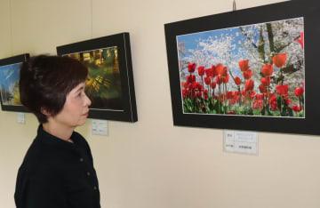色鮮やかな花の写真がずらりと並ぶ写真展(京丹波町坂原・道の駅「和」道路情報センター)