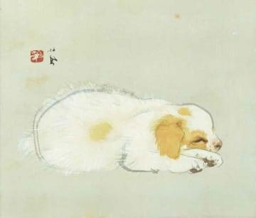 すやすやと眠る子犬を描いた竹内栖鳳の「清閑」