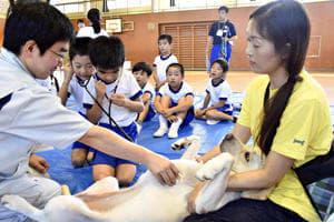犬の心音を聞き、命の大切さを学ぶ児童たち