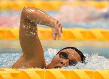 競泳成年女子400メートル自由形で2位の増田葵=山新スイミングアリーナ