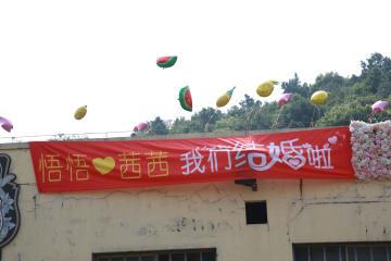 動物園で開かれたゾウの「結婚式」 江蘇省無錫市