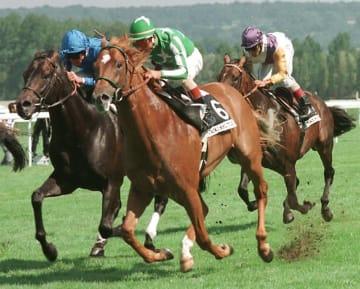 1998年、仏ジャック・ル・マロワ賞を制したタイキシャトル(写真:AFP/アフロ)。名馬に思わぬ災難が
