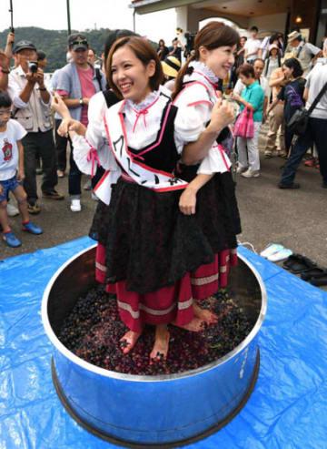 昔ながらのブドウ踏みを再現するワイン娘たち=15日、花巻市大迫町・ワインシャトー大迫