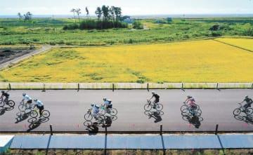 開通間近の東部復興道路を快走する仙台発奥松島グループライドの参加者=15日午前9時ごろ、仙台市若林区