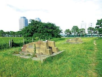 ▲品川台場跡にたたずむ(東京都港区)
