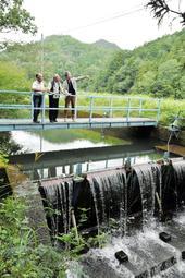 メンバーが小水力発電の適地と見る農業用のせき。下流まで含めると約4メートルの落差がある=波豆川